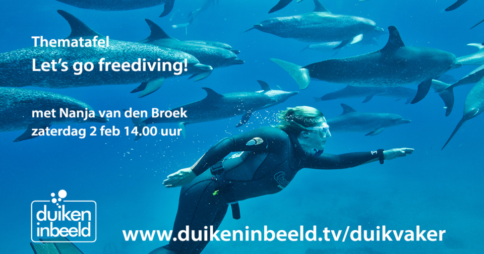Let's go freediving!